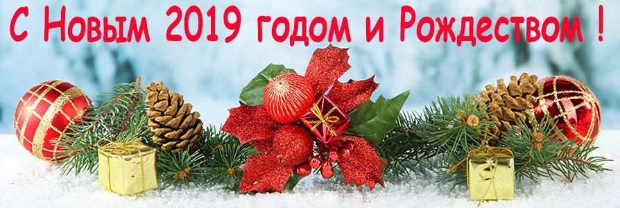Поздравляем с Новым 2019 годом !